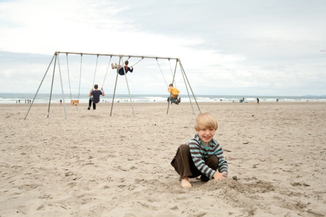 209 Seaside Swings