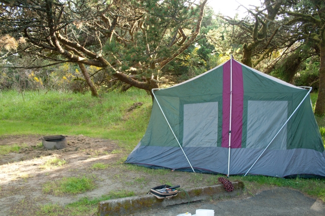 226 Nehalem State Park_