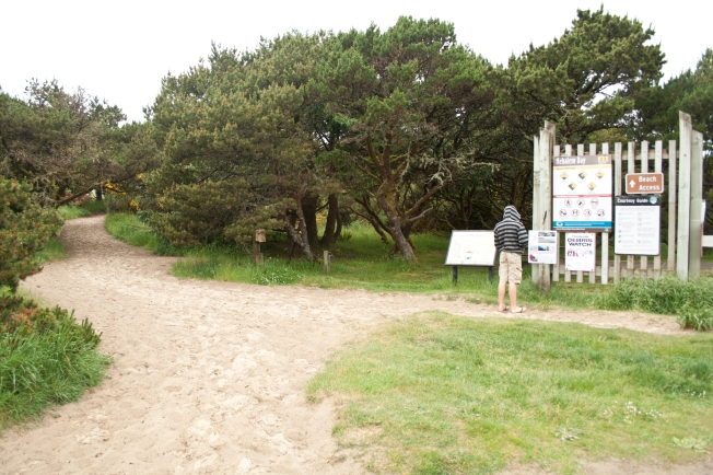 241 Nehalem State Park_