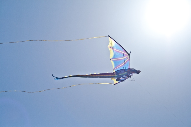 350A Dragon Kite Glass Beach