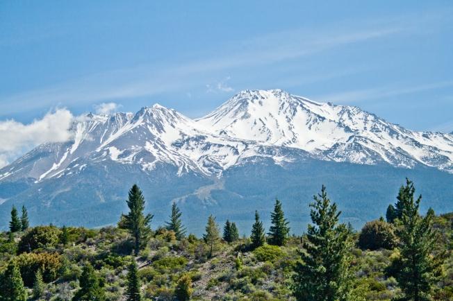 361 Shasta Mountain