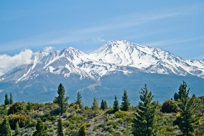 361 Shasta Mountain