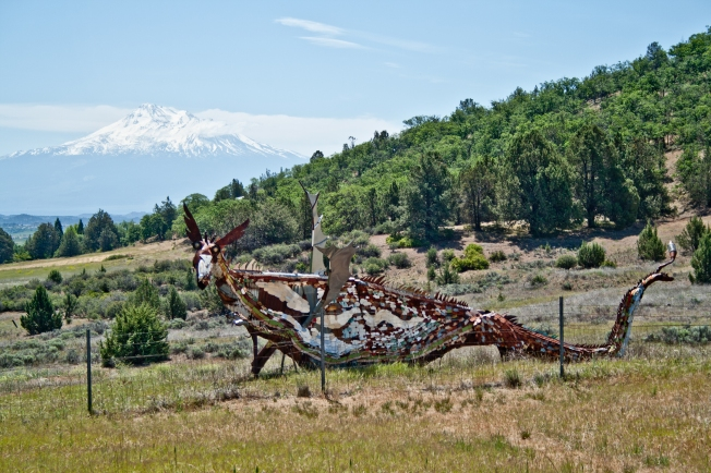 362 Metal Dragon with Shasta Mountain