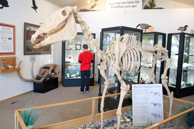 390 Hagerman Fossil Beds
