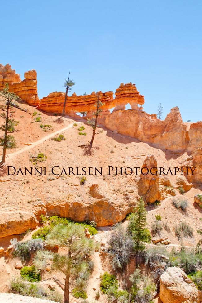 Southern Utah Tour I 2014 106 copy