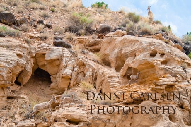 Southern Utah Tour I 2014 32 copy