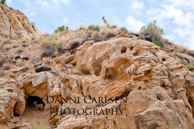 Southern Utah Tour I 2014 34 copy