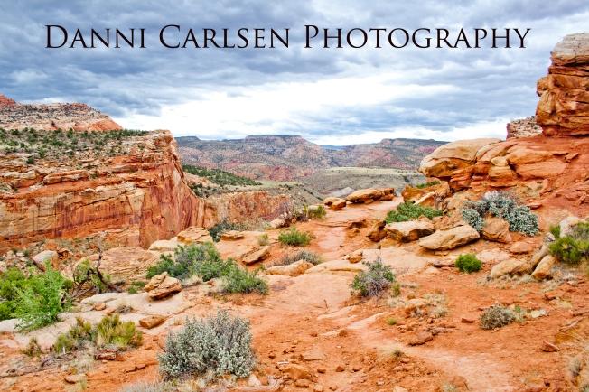 Southern Utah Tour I 2014 39 copy