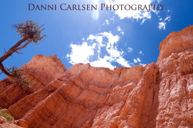 Southern Utah Tour I 2014 65 copy