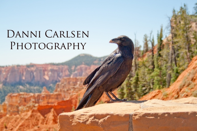 Southern Utah Tour I 2014 95 copy